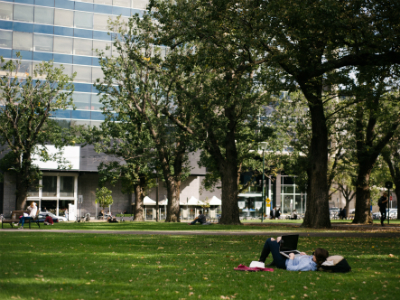Student relaxing on lawn with computer
