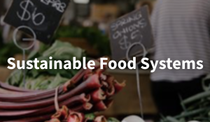 Sustainable food systems logo