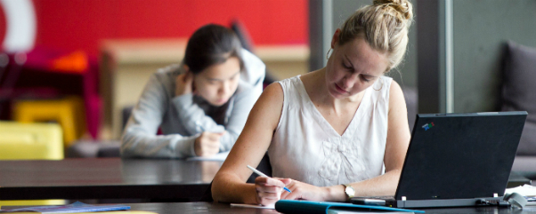 school of culture and communication essay writing guide unimelb